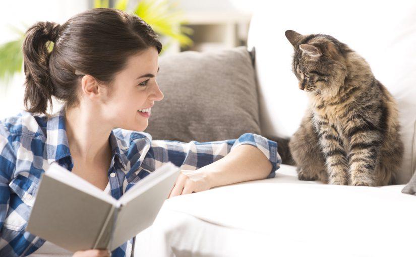 Att leva med en katt